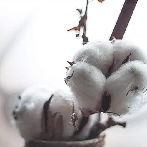 Bio-Baumwolle-StickManufaktur